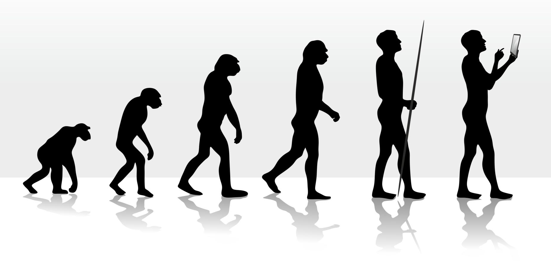 настолько картинка про эволюцию человека директор